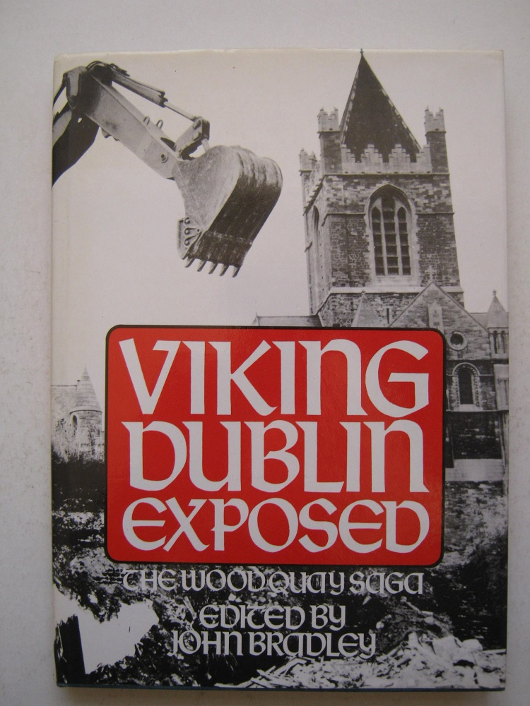 Image for VIKING DUBLIN EXPOSED: the Wood Quay saga :