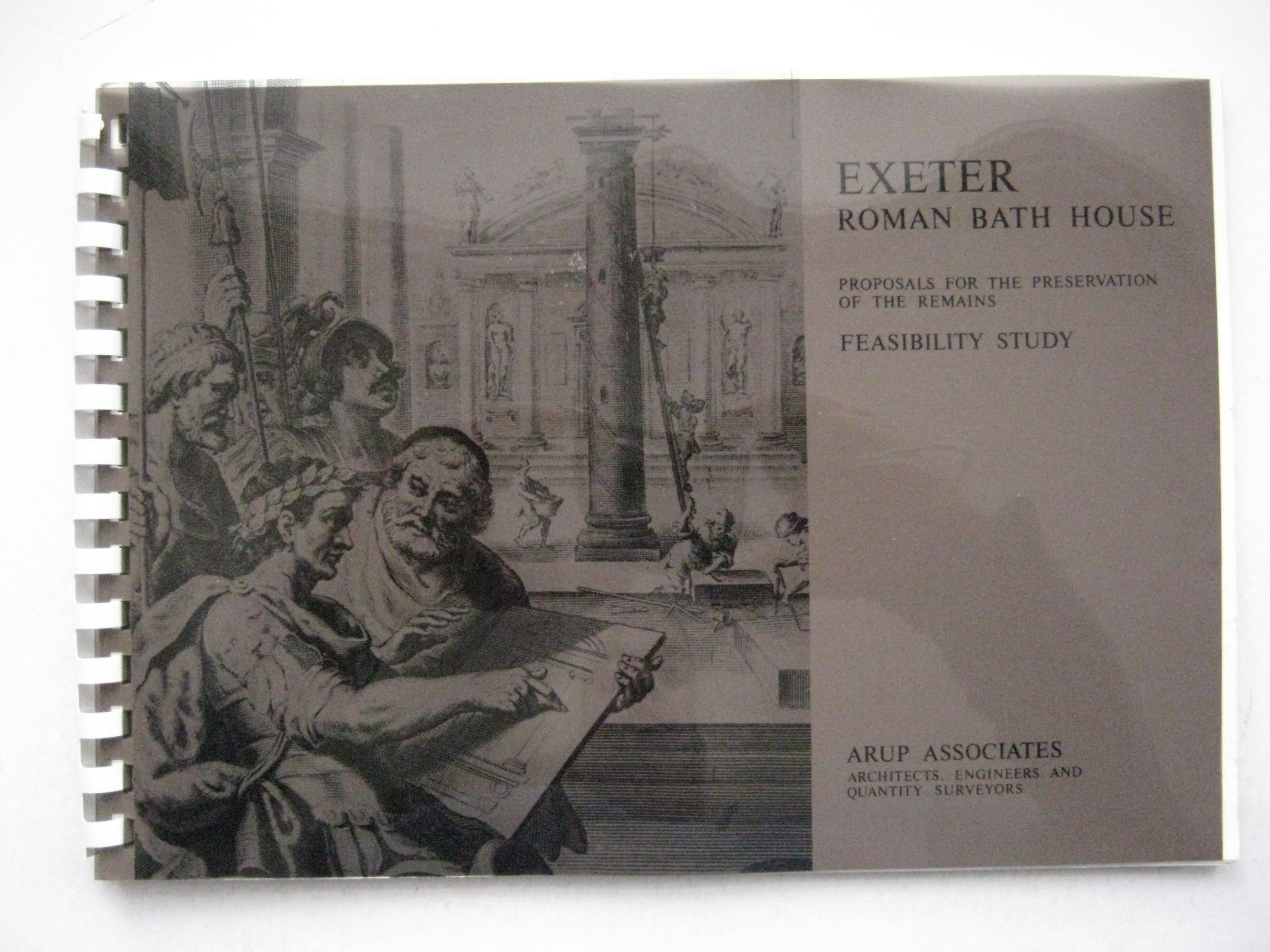 Image for Roman Bath House Exeter :proposals for the preservation of the remains, feasibility study