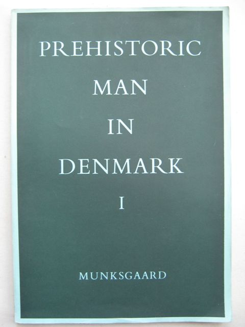 Image for Prehistoric man in Denmark :A study in physical antrhopology (2 vols)