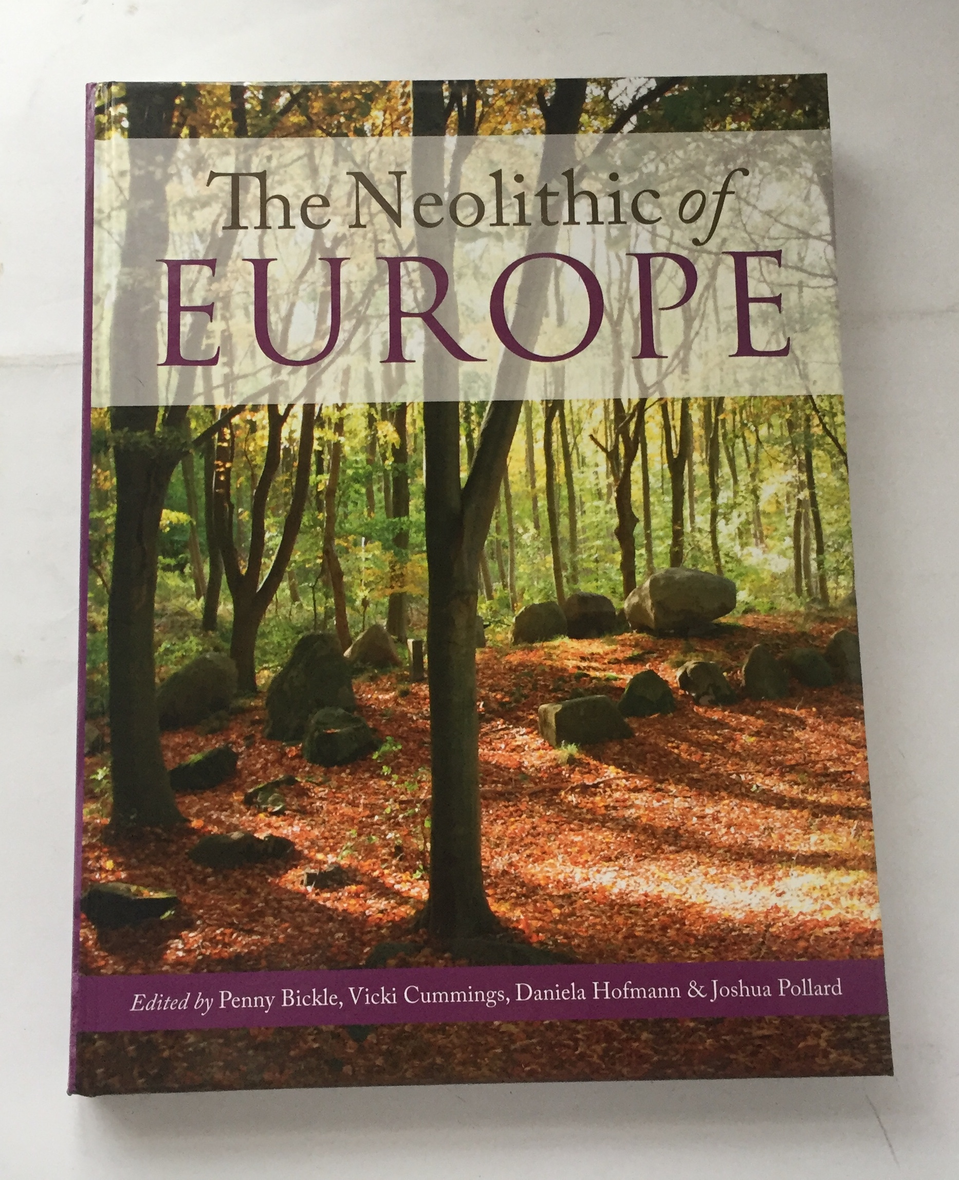 Image for The Neolithic of Europe :Papers in Honour of Alasdair Whittle