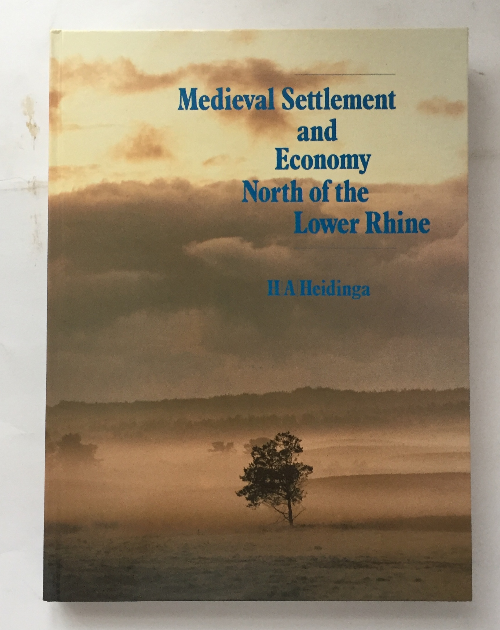 Image for Medieval Settlement and Economy North of the Lower Rhine :Archaeology and History of Kootwijk and the Veluwe (The Netherlands)