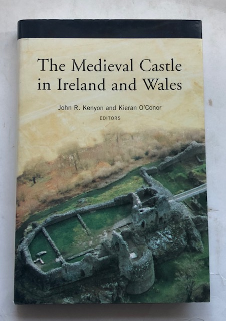 Image for The Medieval Castle in Ireland and Wales :Essays in honour of Jeremy Knight
