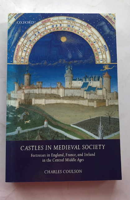 Image for Castles in Medieval Society :Fortresses in England, France, and Ireland in the Central Middle Ages