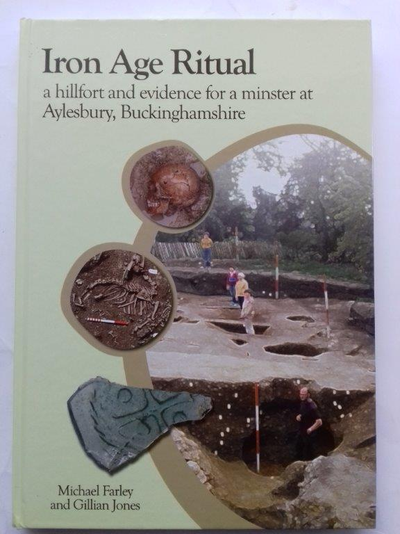 Image for Iron Age ritual :a hillfort and evidence for a minster at Aylesbury, Buckinghamshire