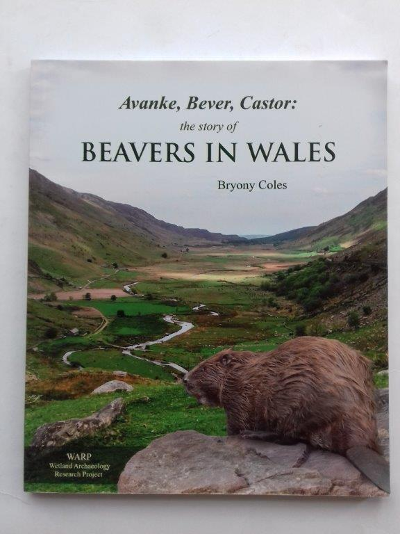 Image for Avanke, Bever, Castor :the story of beavers in Wales