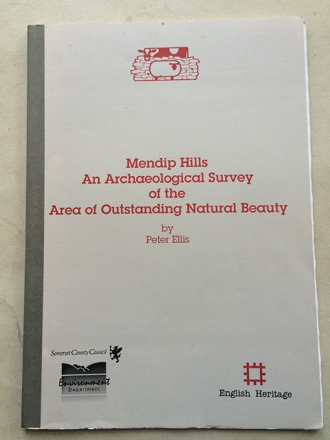 Mendip Hills :An Archaeological Survey of the Area of Outstanding Natural Beauty, Ellis, Peter ;